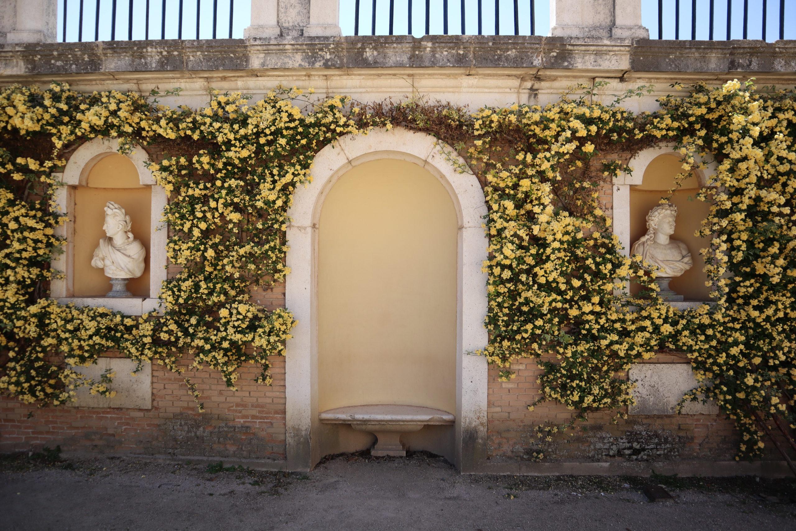 jardines-palacio-real-aranjuez